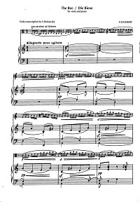 Schubert - The bee for viola and piano - Piano part - first page