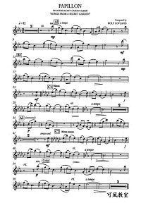 Song From A Secret Garden - Papillon for violin and piano - Instrument part - First page